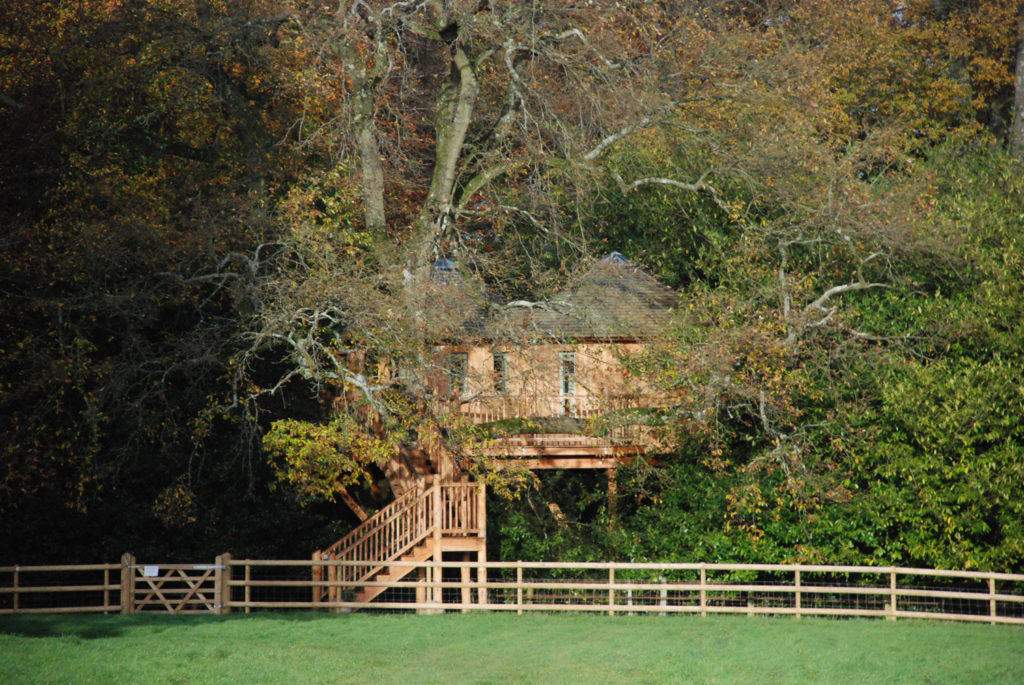 Treehouse Lodge at Harp Tree Court