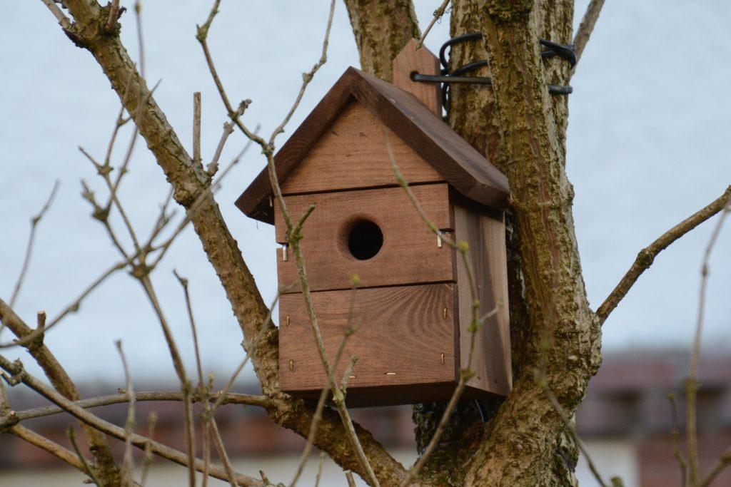 Garden bird box