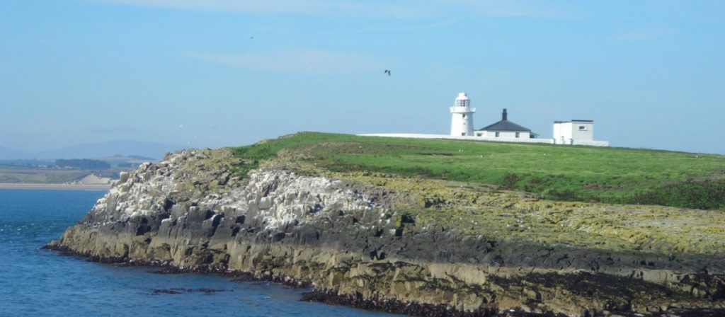 National Trust Farne Islands