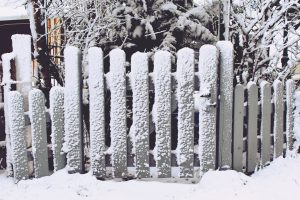 Garden fence in winter